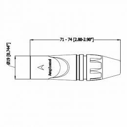 AX3M-f2.jpg